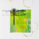 dragonfly card