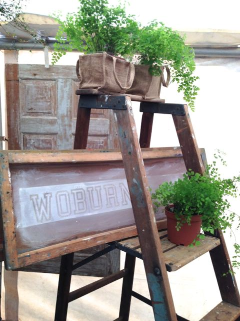 Carried Away antiques step ladder