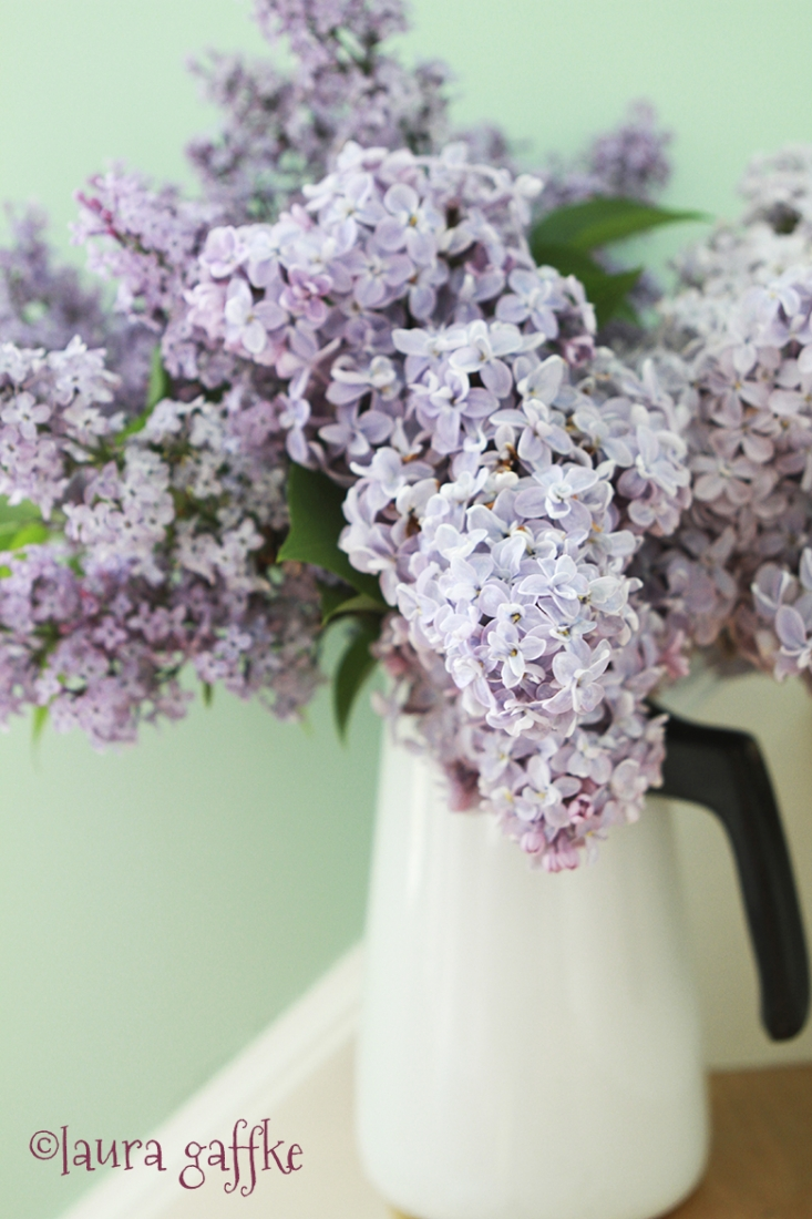 lilac in pitcher.WEB